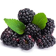Blackberries Ηλείας (125g)