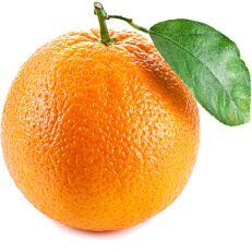 Πορτοκάλια valencia σε διχτάκι εγχώρια