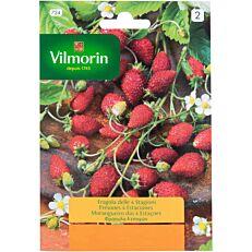 Σπόροι VILMORIN φράουλα 4 εποχών