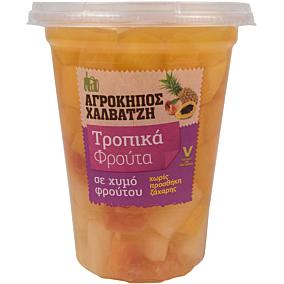 Κομπόστα ΑΓΡΟΚΗΠΟΣ ΧΑΛΒΑΤΖΗ τροπικά φρούτα σε φέτες (240g)