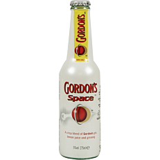 GORDON'S SPACE (24x275ml)