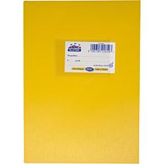 Τετράδιο SKAG κίτρινο 50φύλλων