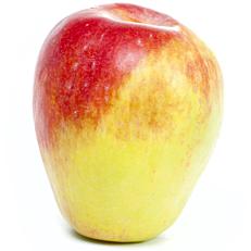 Μήλα φιρίκια εγχώρια