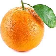Πορτοκάλια ναβαλίνες Άρτας